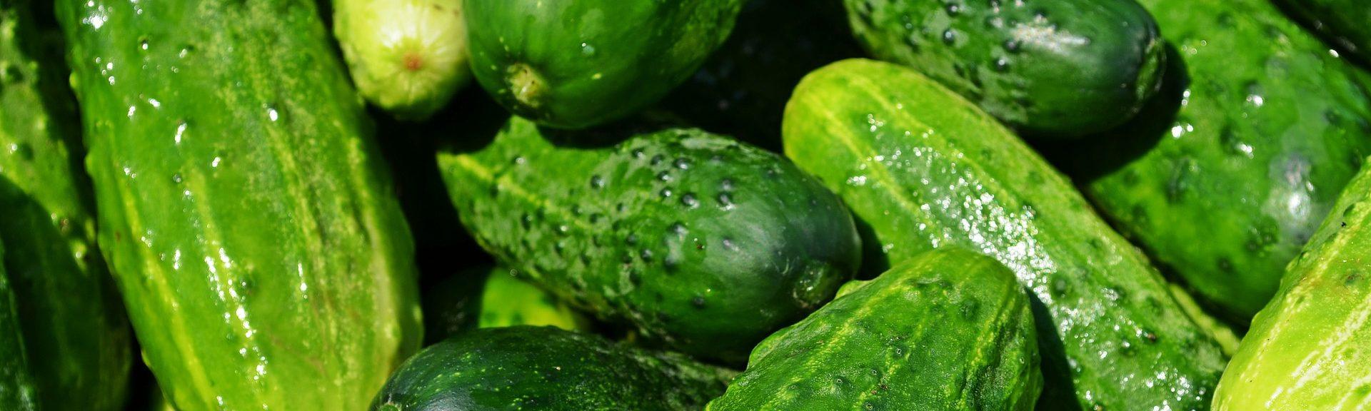 Menú saludable: Tosta de atún con tomate, gazpacho y melón