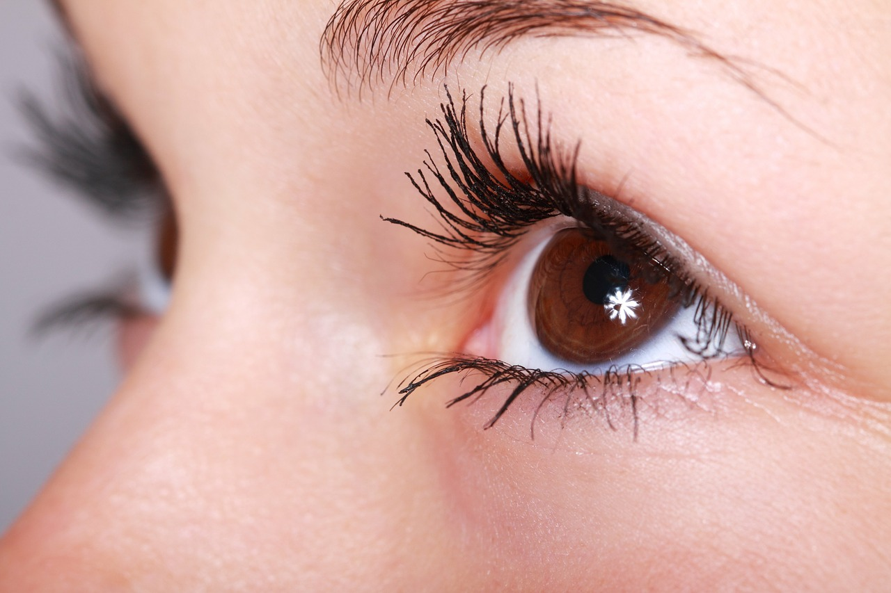 Córnea - Quijada   Medicina Ocular